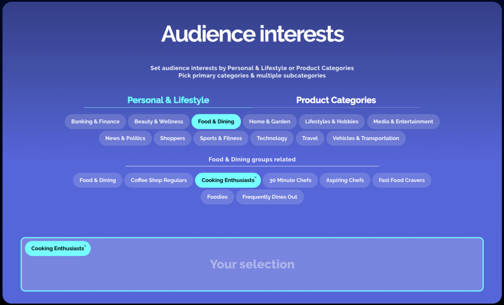 Choose you ad audience interests