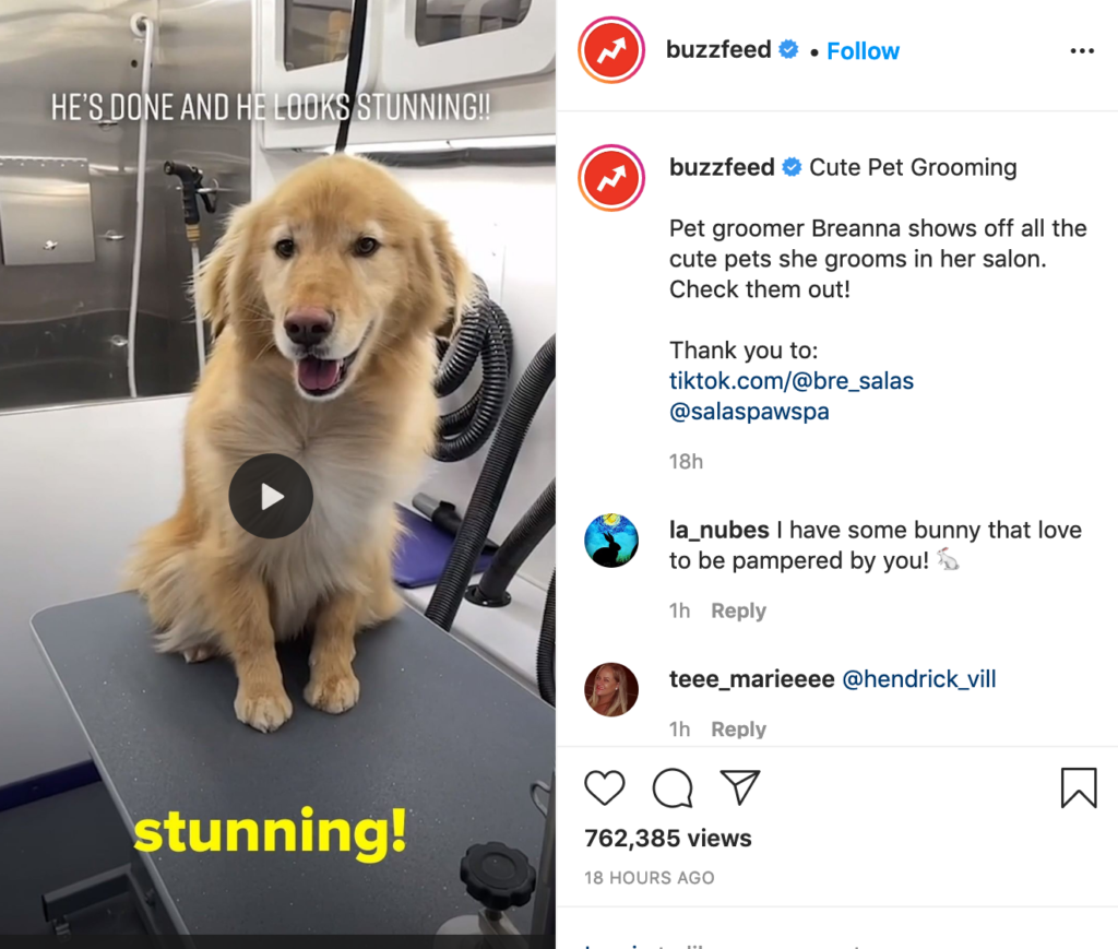 Buzzfeed often reposts on Instagram and it's a great tactic when starting an Instagram profile.